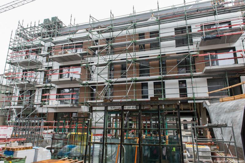 Rénovation des immeubles Linné-Plantes